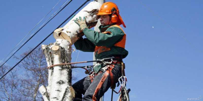 Расценки работ промышленных альпинистов